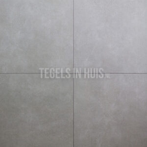 Vloertegel Molen grijs 60x60 cm R10 full body