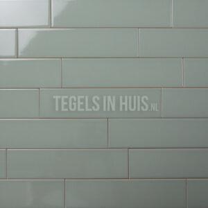 langwerpige strakke witjes 7,5x30 cm wandtegel glans sage groen tozcw881